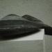 a28-o-t-bardiglio-45cm-2001